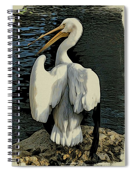 White Pelican Spread Spiral Notebook