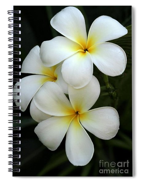 White Plumeria Spiral Notebook