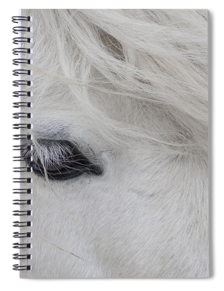 White Pony Spiral Notebook