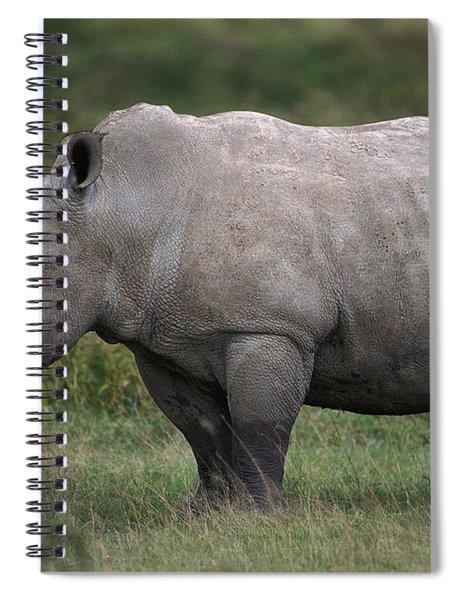 White Rhinoceros Ceratotherium Simum Spiral Notebook