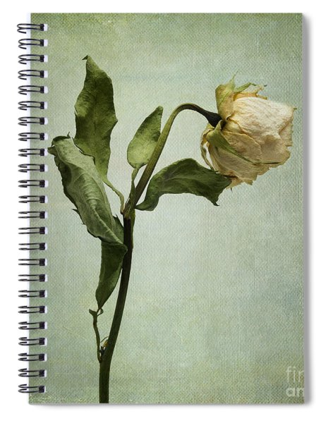 White Rose Desiccated Spiral Notebook