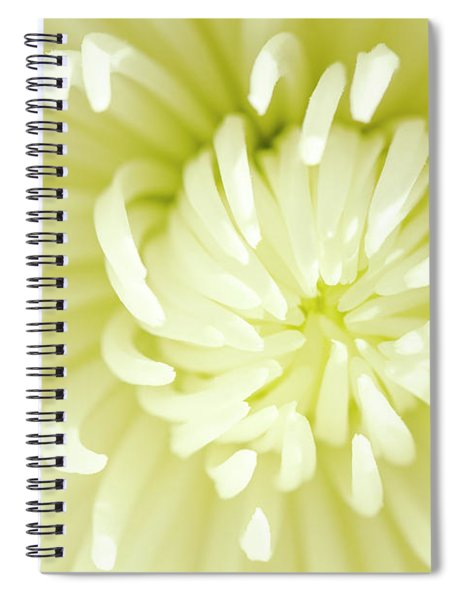 White Spider Mum Spiral Notebook