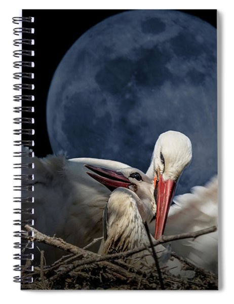 White Storks Of Fagagna With Full Moon Spiral Notebook