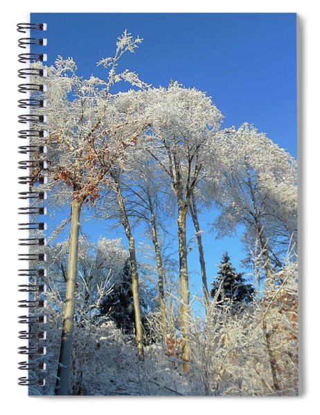 White Trees Clear Skies Spiral Notebook