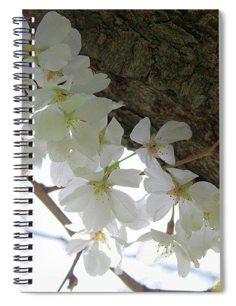 Dogwood Branch Spiral Notebook