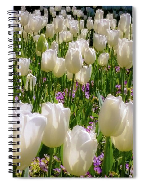 White Tulips In Bloom Spiral Notebook