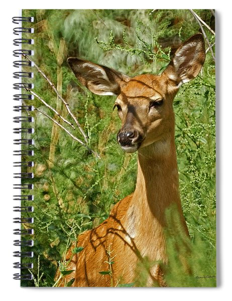 Whitetail Doe Painterly Spiral Notebook