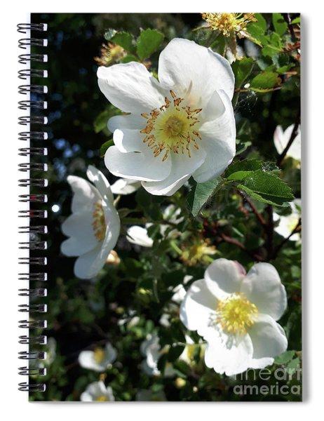 White, Wild And Wonderful Spiral Notebook