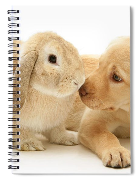 Who Ate All The Carrots Spiral Notebook