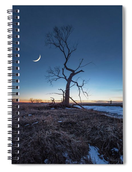 Wicked Tree Spiral Notebook