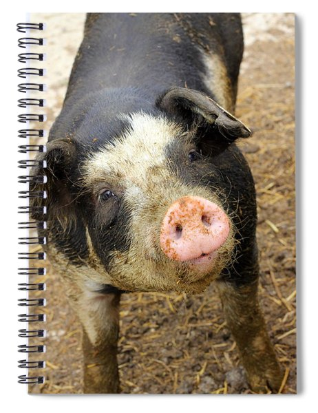 Wilbur Spiral Notebook