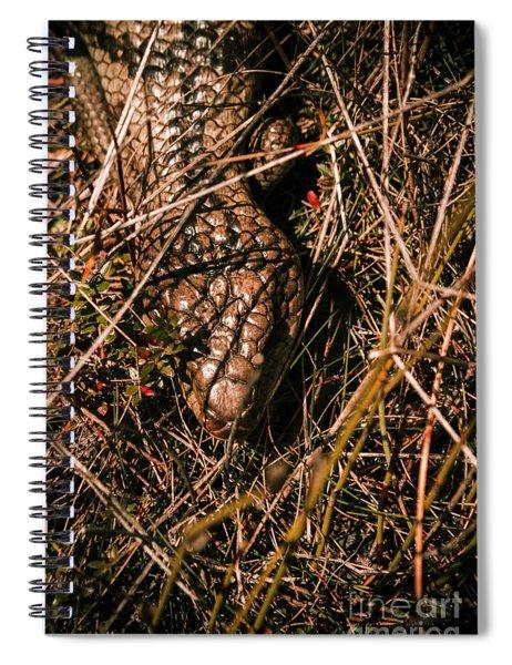 Wild Australian Blue Tongue Lizard Spiral Notebook