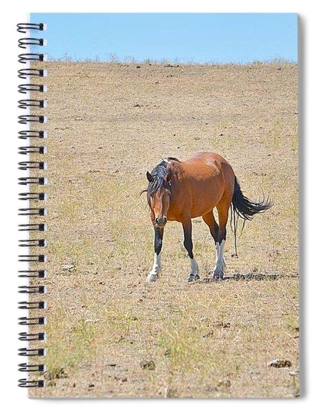Wild Beauty Spiral Notebook