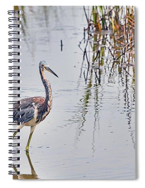 Wild Birds - Tricolored Heron Spiral Notebook