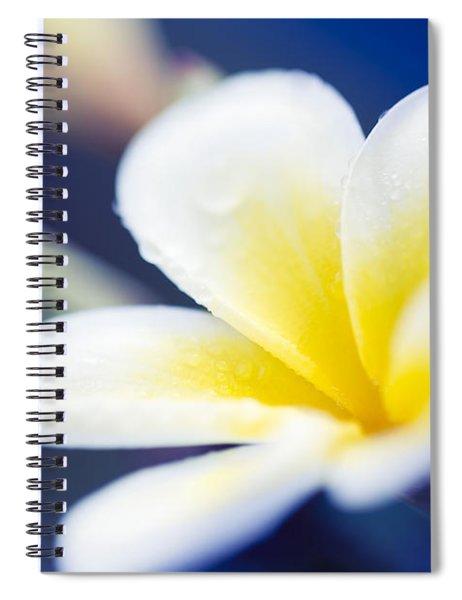 Wild Blue Morning Spiral Notebook