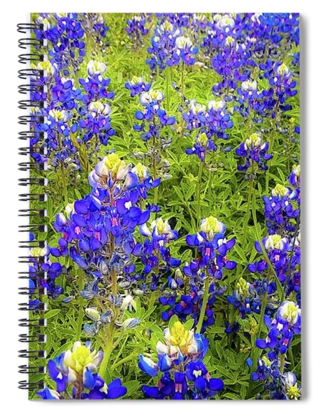 Wild Bluebonnets Blooming Spiral Notebook