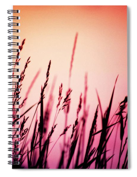 Wild Grasses Spiral Notebook