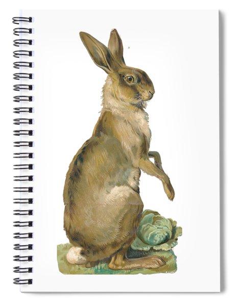 Wild Hare Spiral Notebook by ReInVintaged