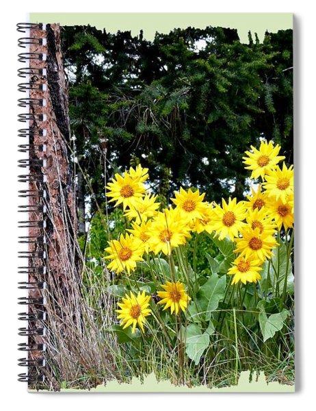 Wild Oyama Sunflowers Spiral Notebook
