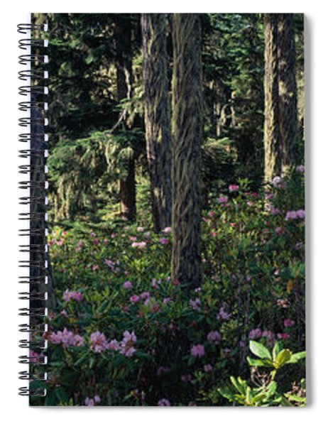 Wild Rhododendrons Mount Hood National Spiral Notebook