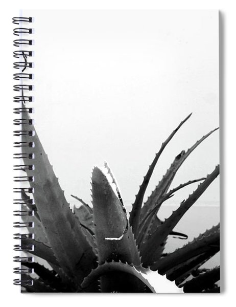 Wild Succulent-  By Linda Woods Spiral Notebook