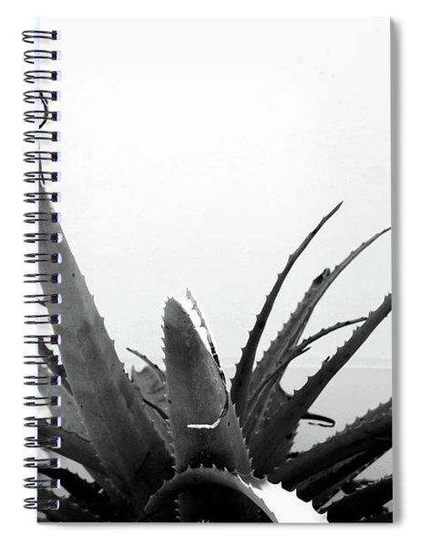 Wild Succulent-  By Linda Woods Spiral Notebook