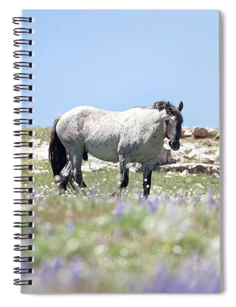 Wildflowers And Mustang Spiral Notebook