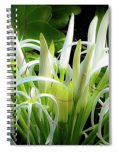Wildflowers Of Hawaii Spiral Notebook