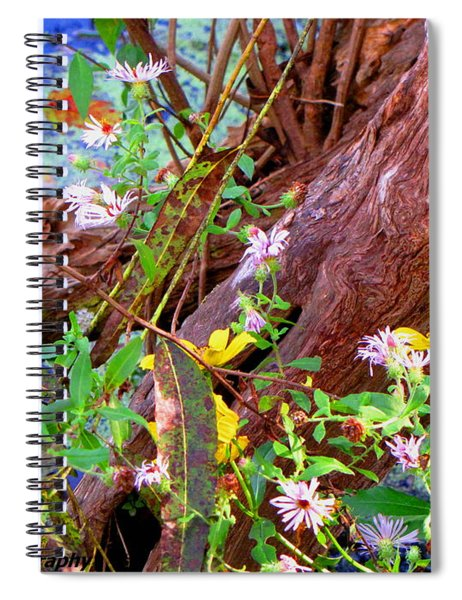 Wildflowers On A Cypress Knee Spiral Notebook