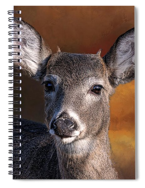 Wildlife - Button Buck - Deer Spiral Notebook