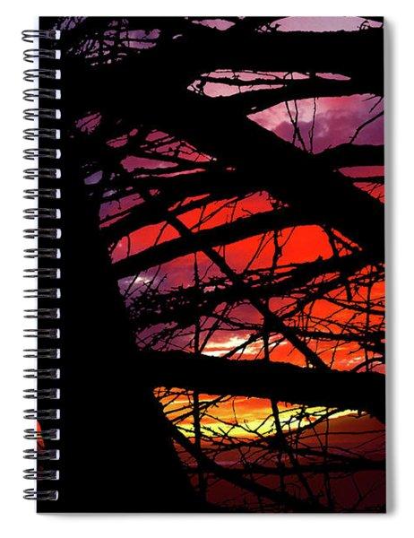 Wildlight Spiral Notebook
