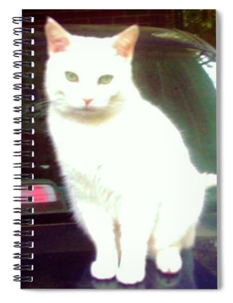 Will Wash Car For Treats Spiral Notebook