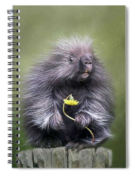 Will You Be Mine? Spiral Notebook
