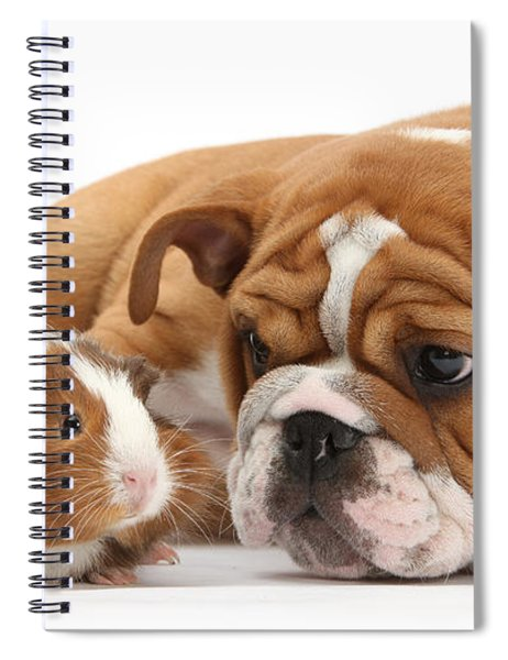 Will You Be My Friend? Spiral Notebook