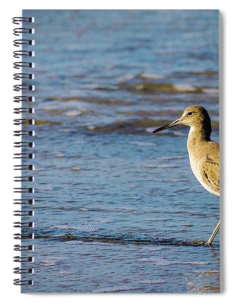 Willet 2 Spiral Notebook