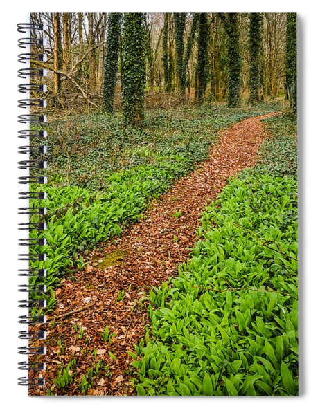 William Butler Yeats Woods Of Coole Park Spiral Notebook