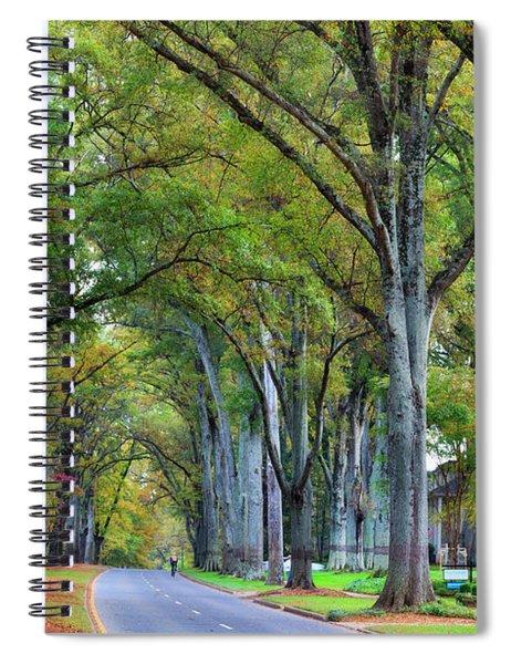 Willow Oak Trees Spiral Notebook