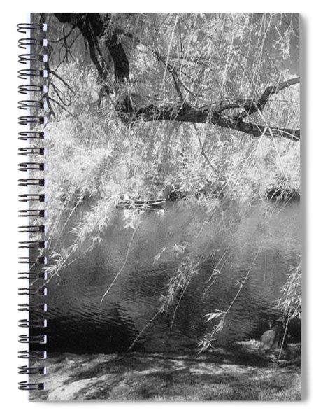 Willow Tree Lake II Spiral Notebook