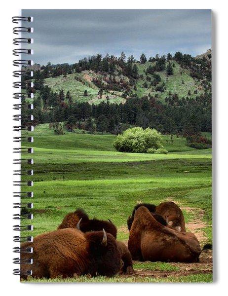 Wind Cave Bison Spiral Notebook