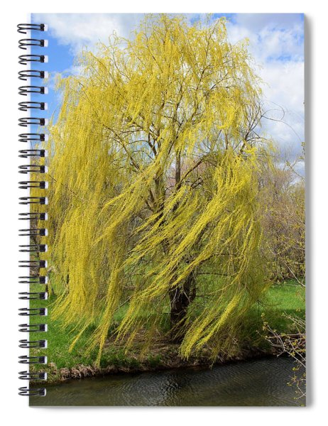 Wind In The Willow Spiral Notebook
