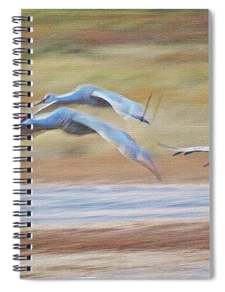 Wing Beats, Sandhill Cranes Spiral Notebook