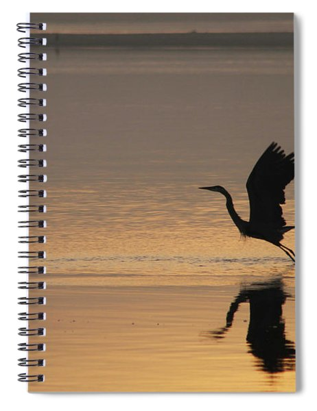 Wings Of Dawn Spiral Notebook