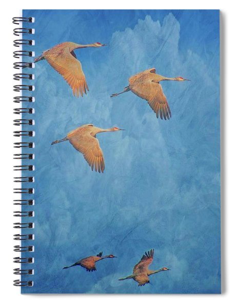 Wings Of The Ancient, Sandhill Cranes Spiral Notebook