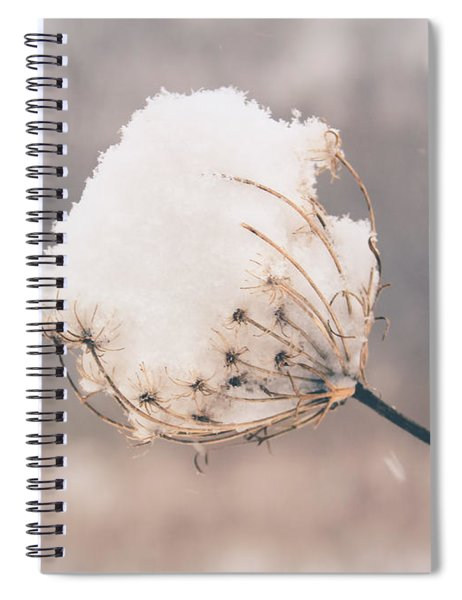 Winter Beauty Spiral Notebook