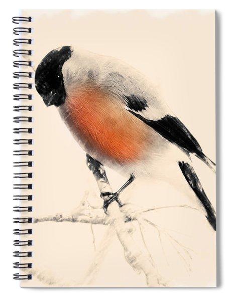 Winter Bullfinch Spiral Notebook