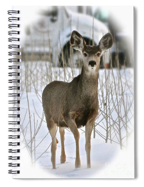 Winter Deer On The Tree Farm Spiral Notebook