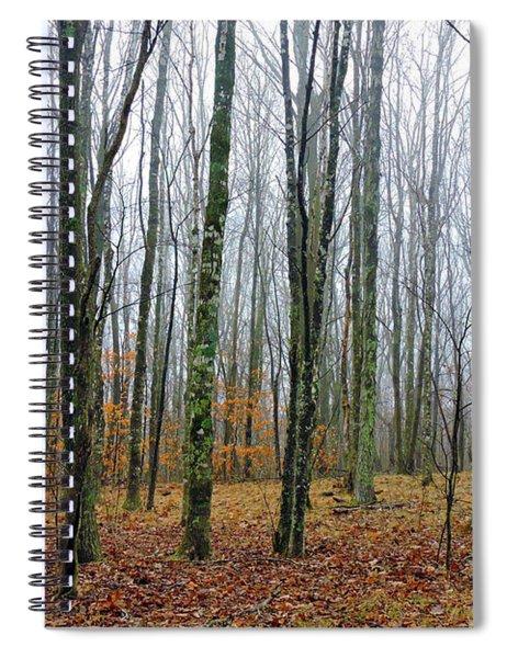 Winter Forest Spiral Notebook