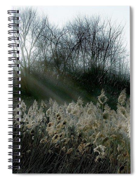 Winter Fringe Spiral Notebook