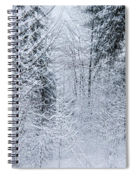 Winter Glow- Spiral Notebook