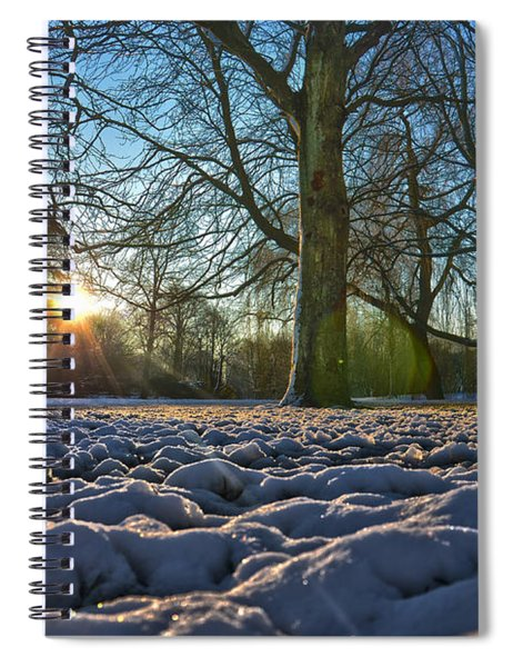 Winter In The Park Spiral Notebook